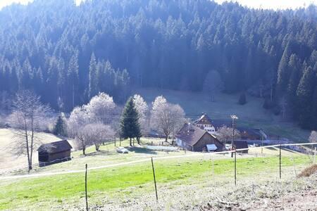 Bauernhaus Schwarzwald Seewald 100% Natur Badesee