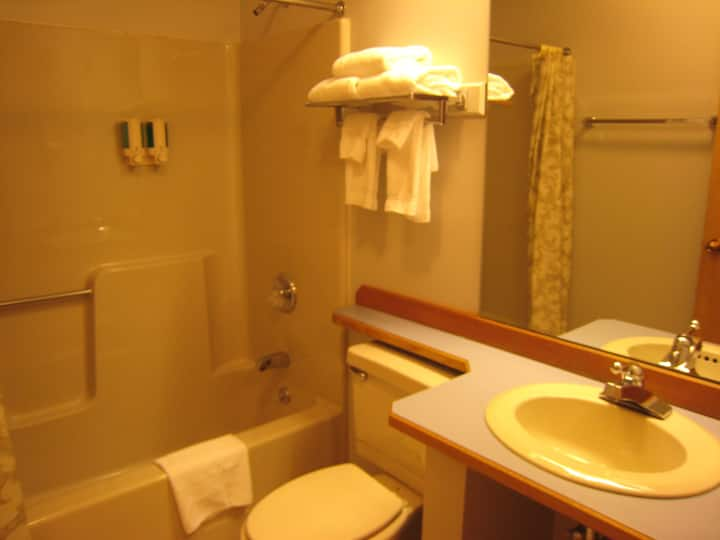 Room with Single Queen Size bed and Private Bath 1/2 mile to the Sugarbush Resort.  Free High-Speed WiFi.