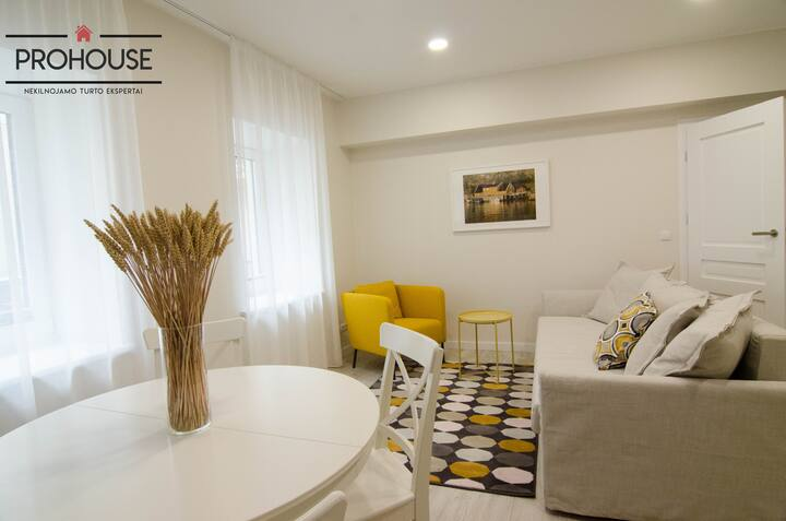 TWO ROOM APARTAMENT IN THE OLDTOWN