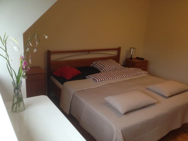 spacious quiet room/bicycles/own bath/wifi - Gentofte - House