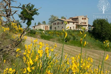 "B&B Terra e Cielo ""Calmancino"" Camera Singola - Bed & Breakfast"