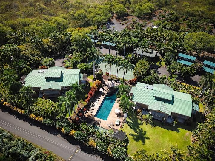Amazing Hawaiian Plantation Kona