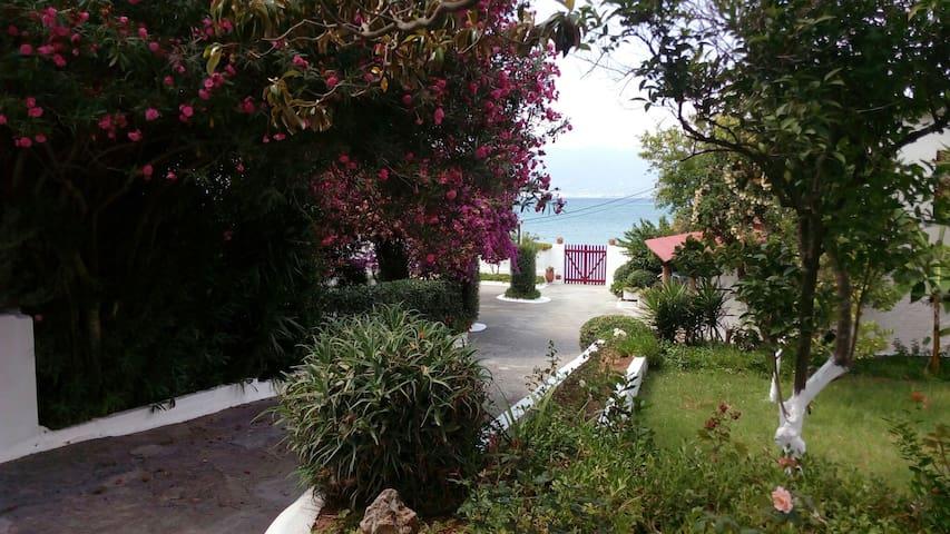 Flat by the beach into a flourishing garden - Avia - Apartamento