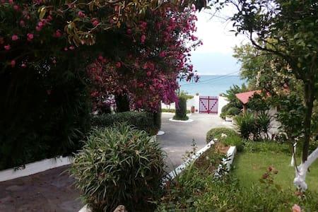 Flat by the beach into a flourishing garden - Avia
