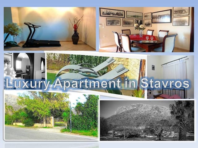 Apartment in Chania  Stavros - Stavros - House