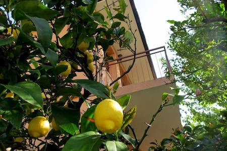 Charming Apartment in Trpanj - Trpanj - Daire