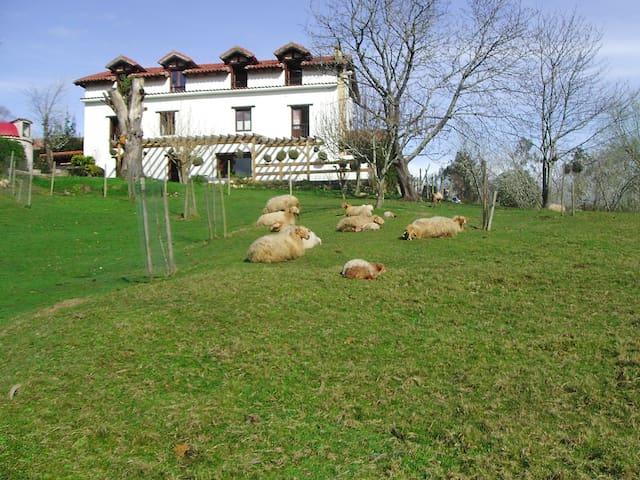 Apartamento en rural en Cantabria - Lamadrid - Appartement