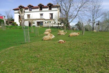 Apartamento en rural en Cantabria - Lamadrid