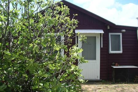 Buck's Cabin