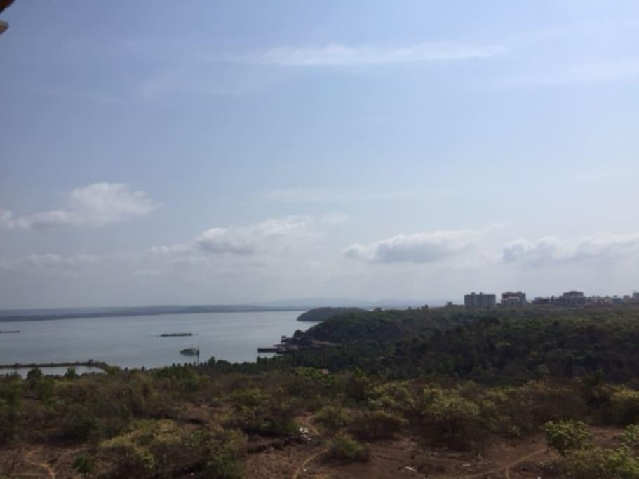 Serene Zuari River