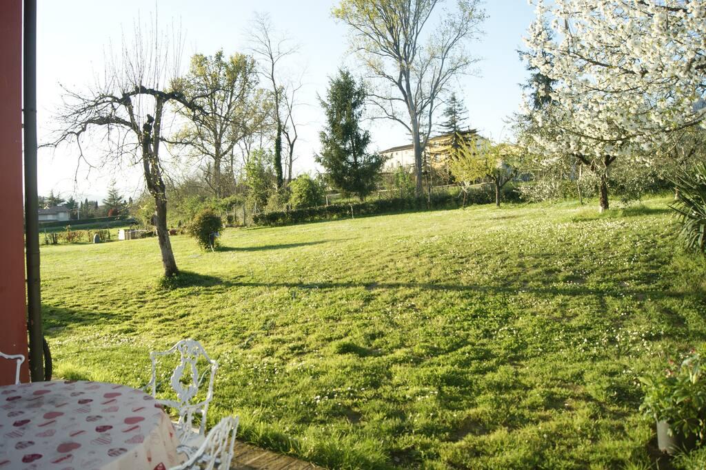 Una parte del giardino dietro casa