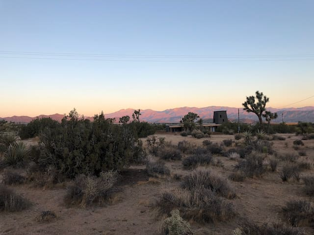 Thousands of acres of open Joshua Tree National Park and Desert Land.....