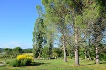 Jardin du Mas de l'Olivier