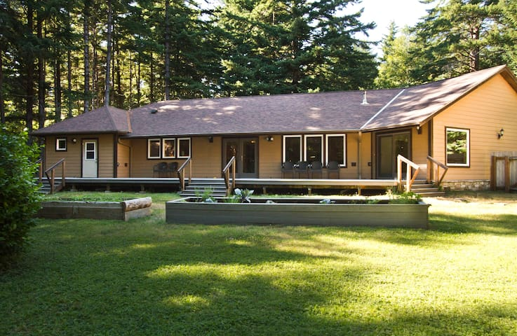 Beautiful home plus a log cabin in tranquil forest