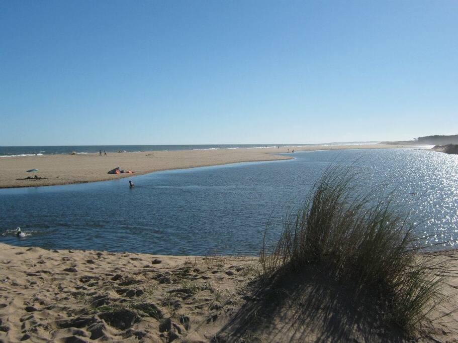 Laguna de agua dulce con desembocadura al  mar en la playa de Chihuahua
