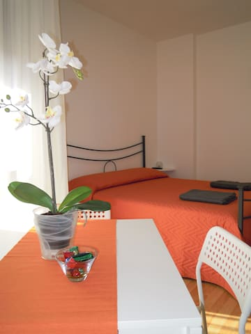 Twin/Triple bedroom and private bathroom - Pisa - Appartement