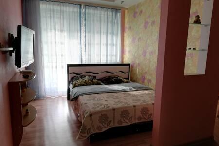 Квартира в Центре города WI-FI