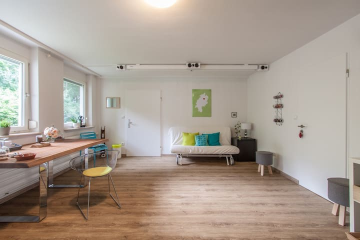Realm of nature in the middle of the city - Würzburg - Appartement