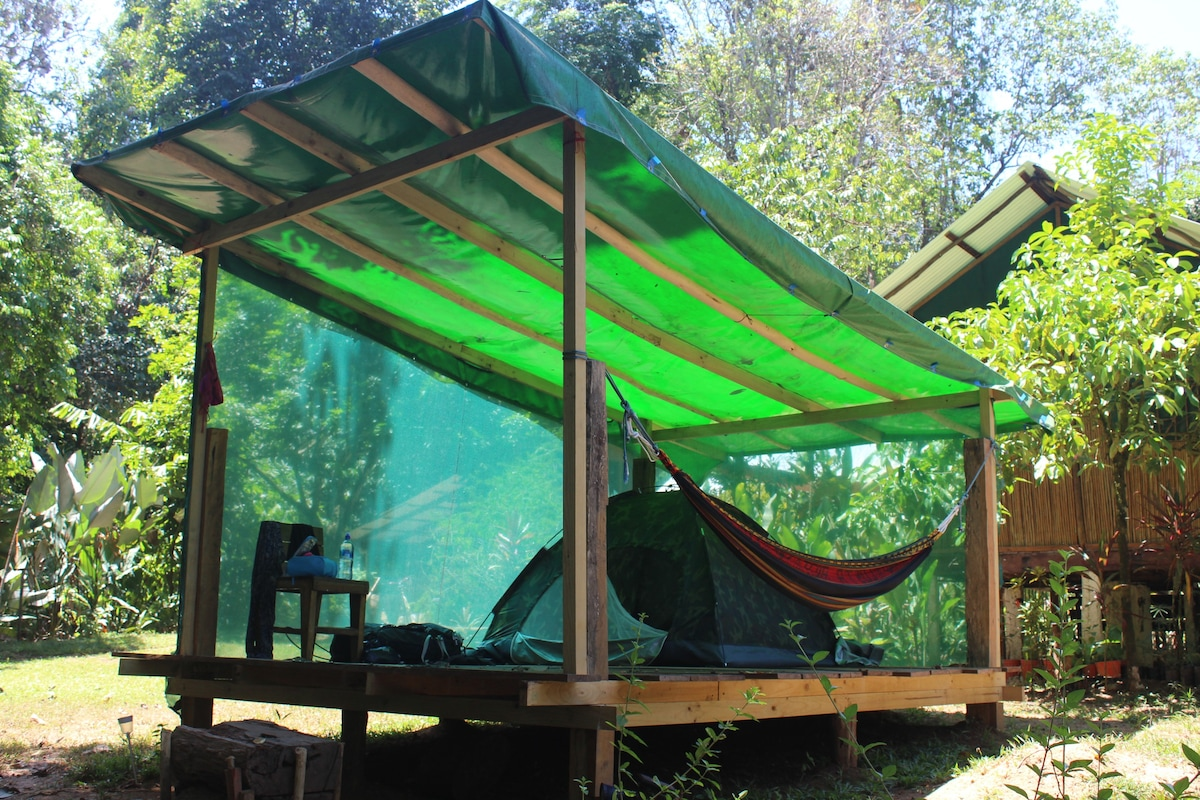 ... Zelt Bob mit Stuhl und Hängematte & Tents Bob u0026 Rasta - Jungle and Pacific - Tents for Rent in ...