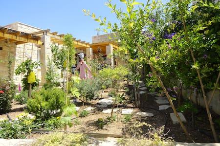 PERRGELL Bed&Breakfast - Paphos