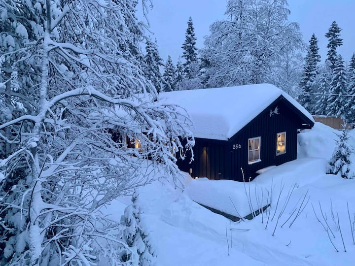 Stylish cottage close to ski resort