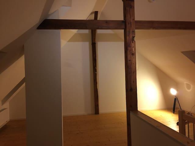 Gemütliche Maisonetten-Wohnung mit tollem Ausblick - Karlsruhe - Apto. en complejo residencial