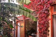 Autumn view of the house