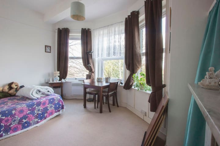 bright large room with a double bed, free Wi-Fi