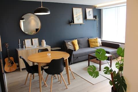 Современные и уютные апартаменты с одной спальней в Рейкьявике