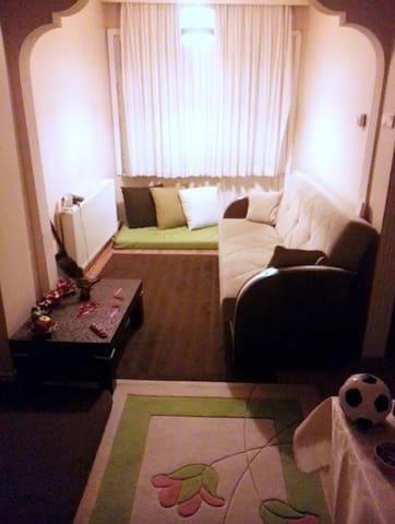 Cozy Flat in Centre & Free WI-FI