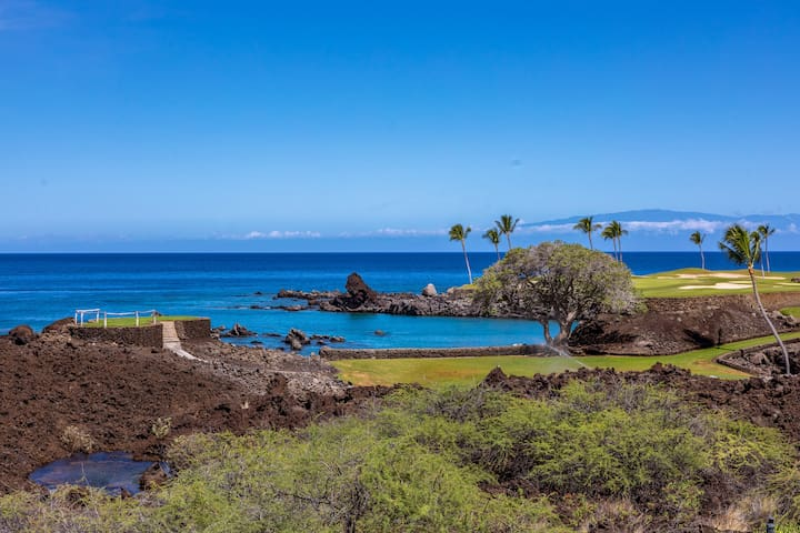 Mauna Lani Point E105