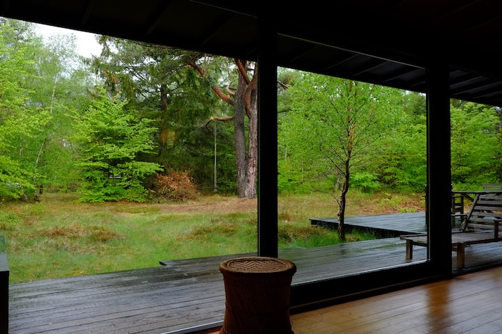 Summerhouse in Asserbo forest