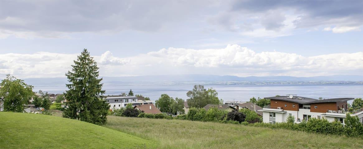 HAMEAU DU LEMAN APT 4 - Évian-les-Bains - Condomínio