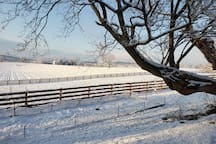 Garden and pasture in the snow