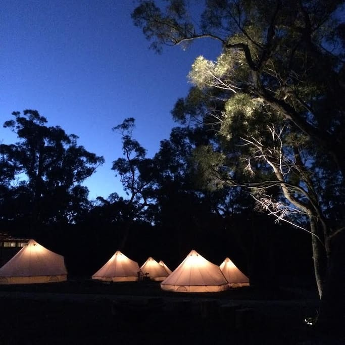 Bell Tents at Night