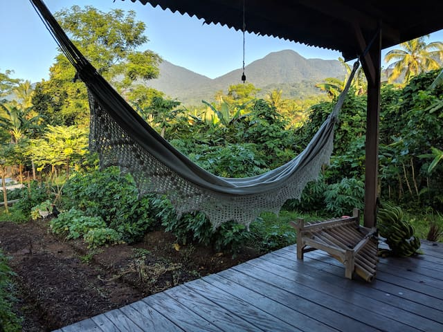 Rumah Joglo & Organic Garden
