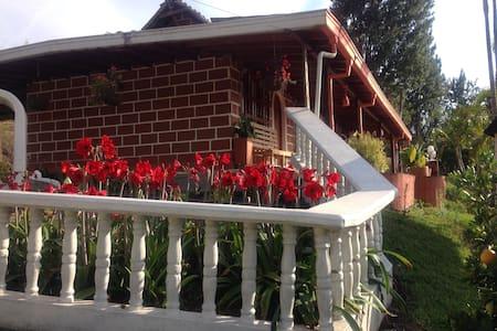 Appartamenti, case e ville con piscina a Girardota - Airbnb