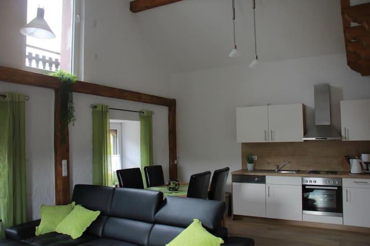 FEWO Wacholder in Alendorf,Lampertstal,Eifelsteig - Blankenheim - Apartemen