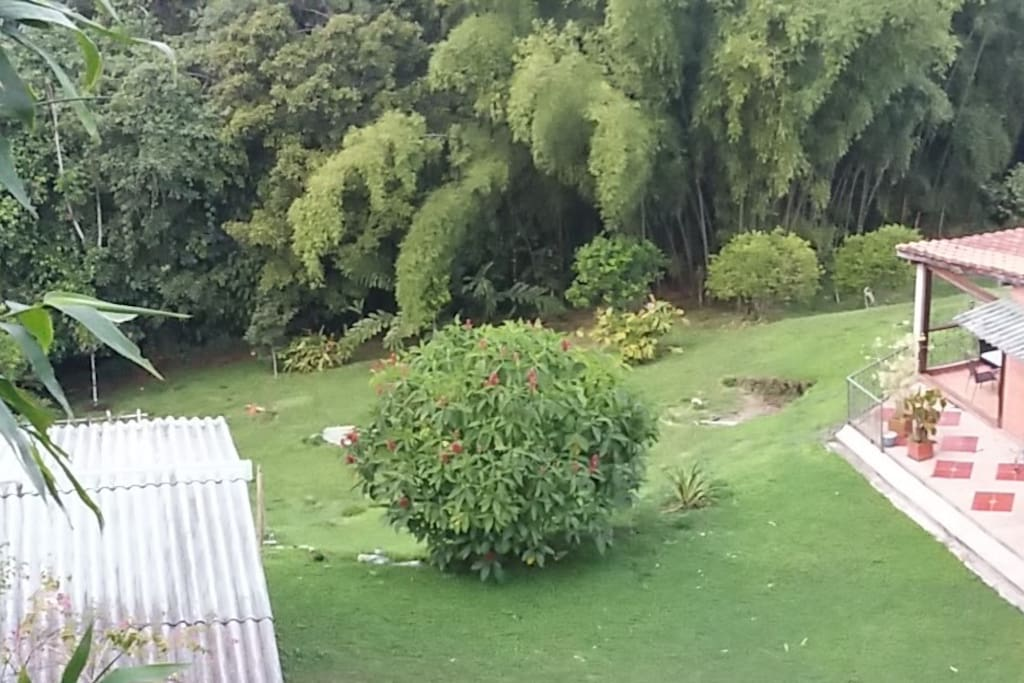 Amplia Zona Verde