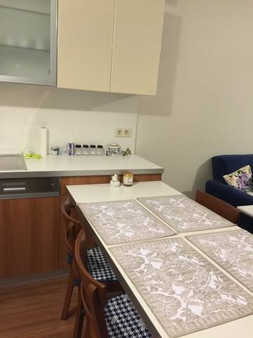 near to airport, new apartment 1+1 - istanbul - 公寓
