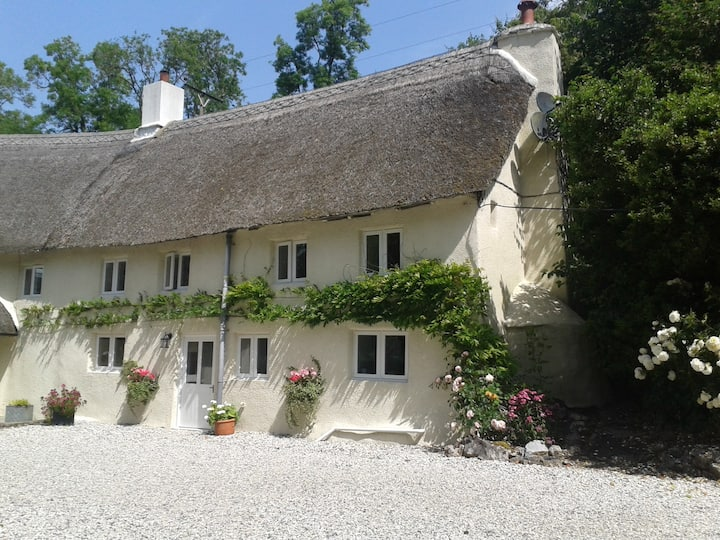 Amberley Cottage