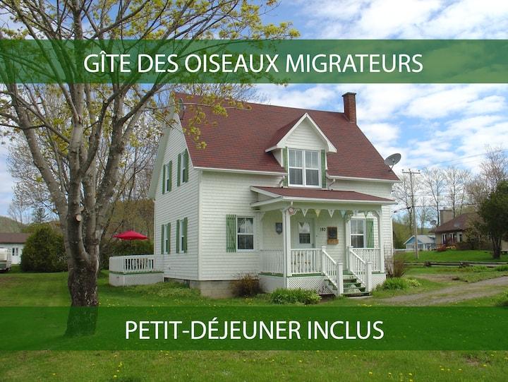 Oiseaux Migrateurs B&B - Grand Héron