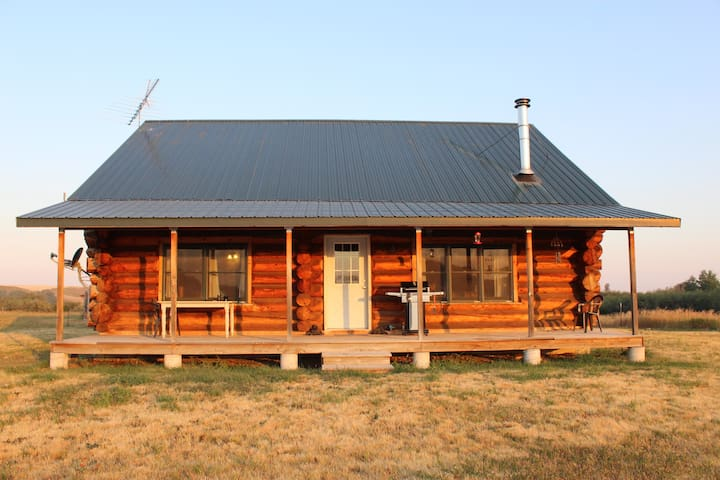 Cozy and Secluded Cabin on 20 acres Driggs area. - Felt