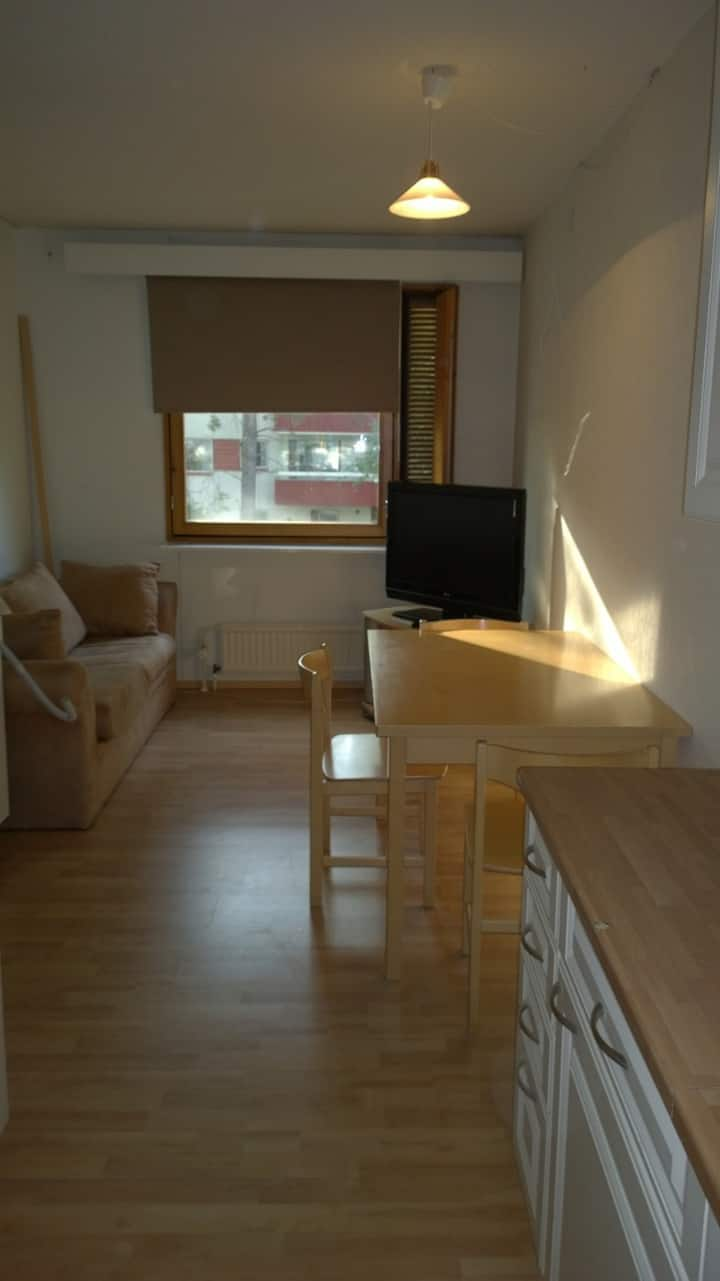 Two bedroom Apartment in the centrum