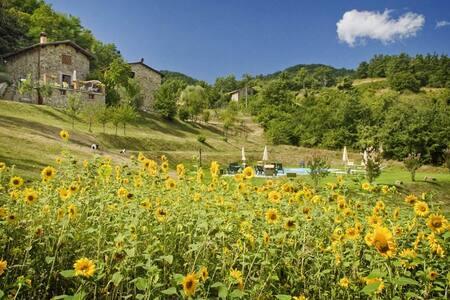 Agriturismo Al Sambuco - La Stalla - Piazza al Serchio - Villa