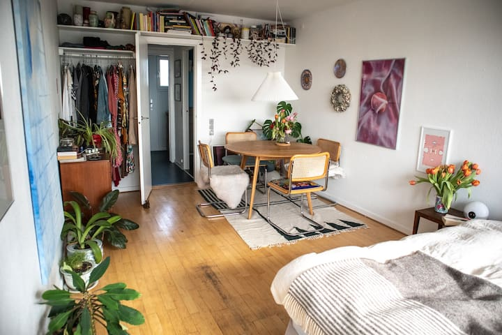 Bohemian studio apartment with a view