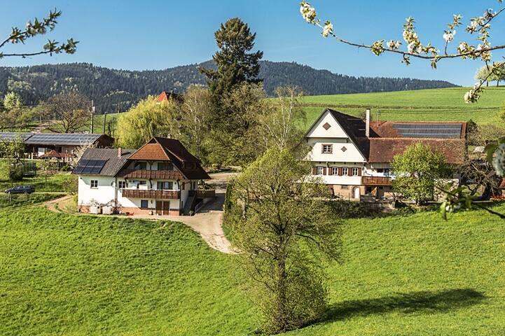 Breigenhof - Hofwohnung