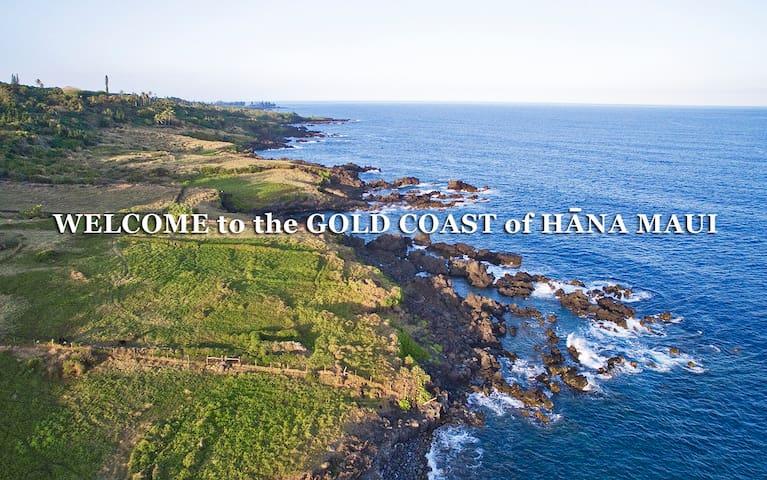 Hāna Ocean Front Cottage - Hāna - House