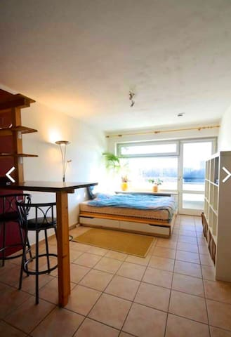 1 Room Appartement with view of the alps