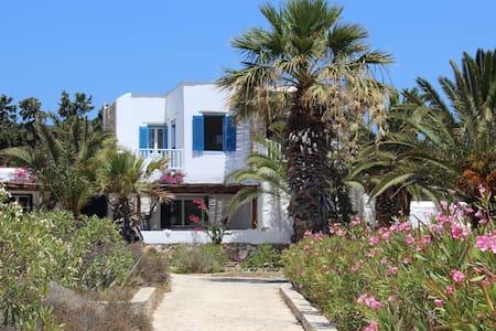 Antiparos - Soros Beach Villa  next to the sea